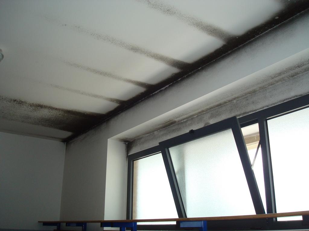 Muffa sul soffitto perch si forma e come risolvere veramente - Perche si forma la muffa in casa ...