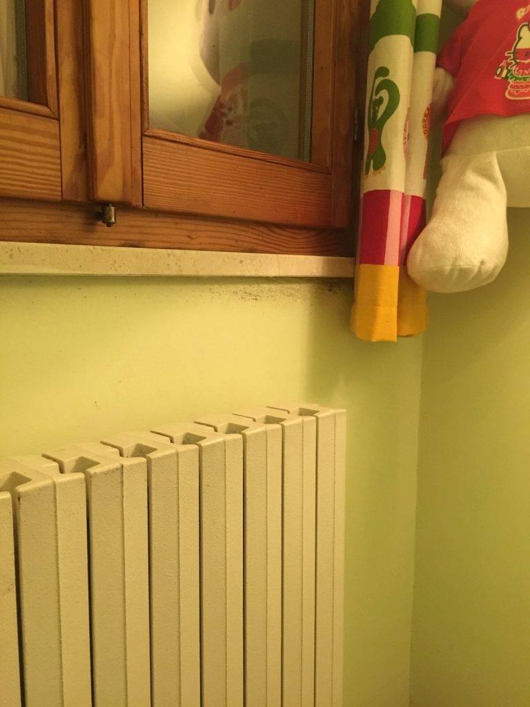 Muffa in camera da letto dei bambini : Come intervenire