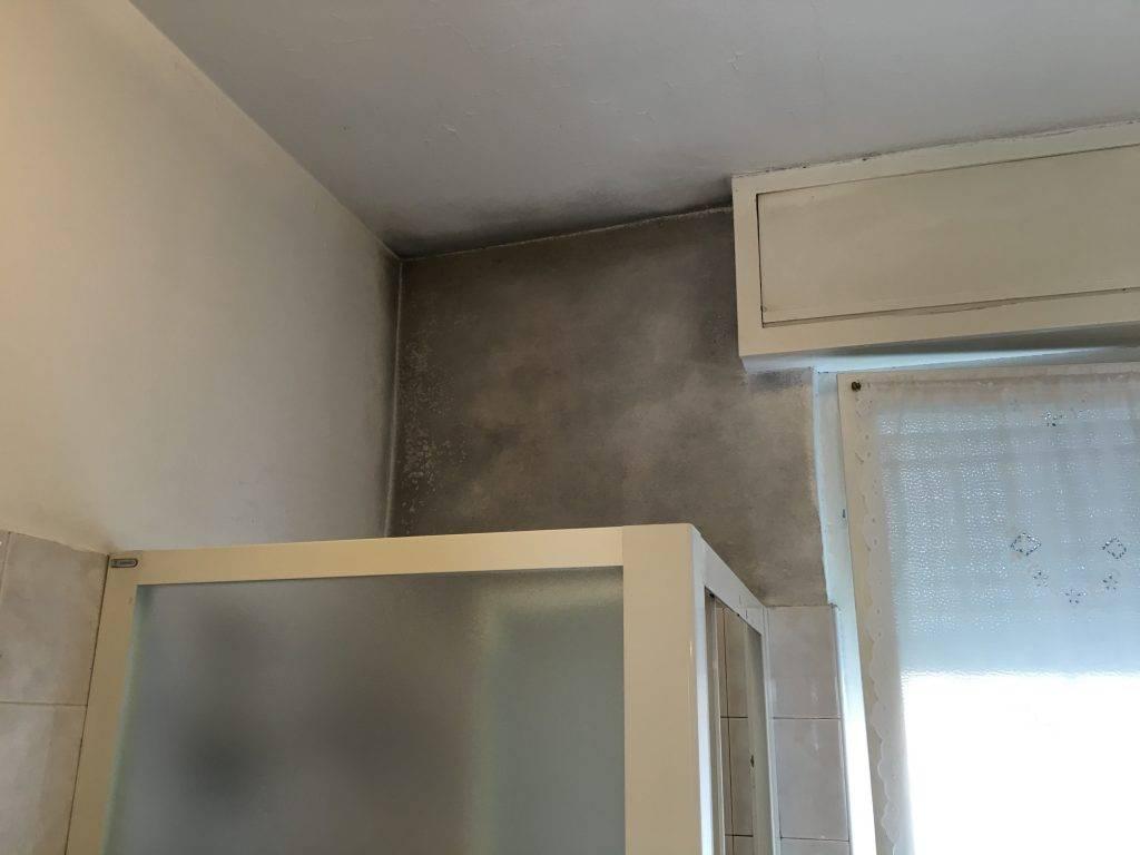 Muffa in bagno sopra il box doccia come fare per risolvere - Come fare per andare in bagno ...