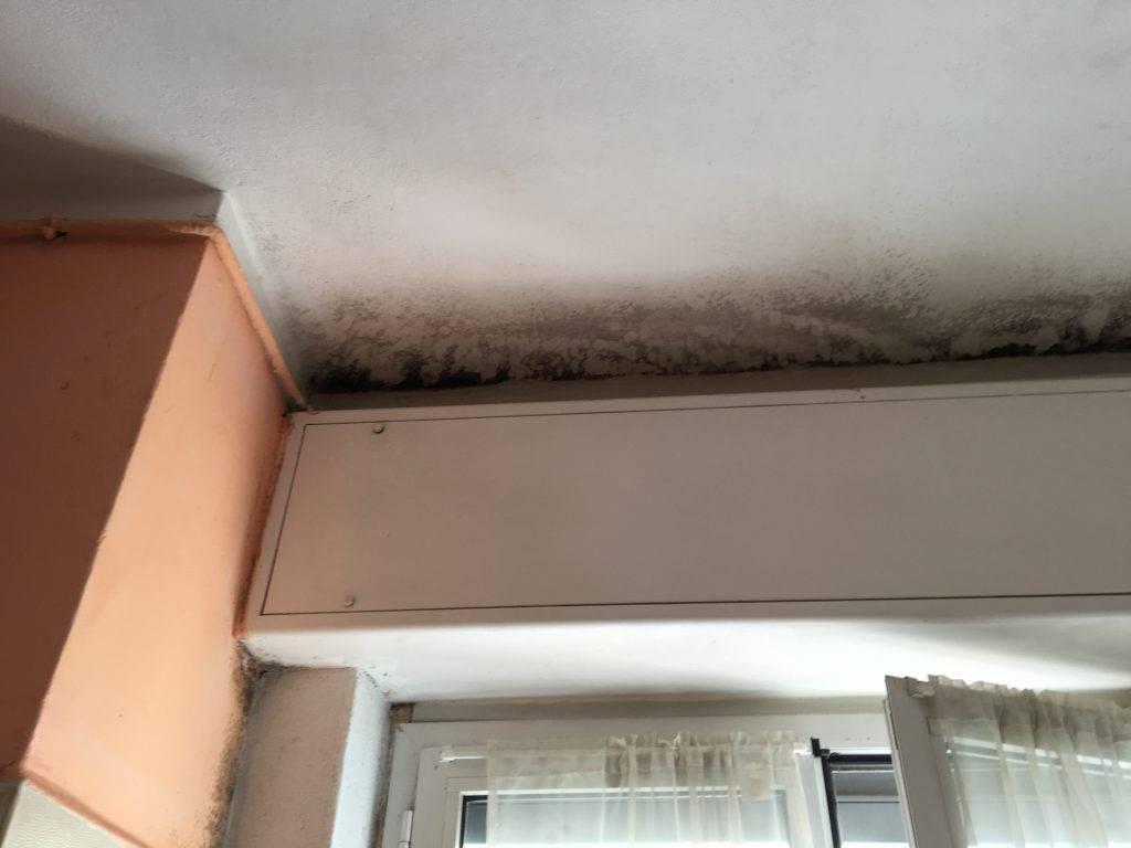 Pannelli di polistirolo sopra la muffa pessima idea for Pannelli di polistirolo per soffitto