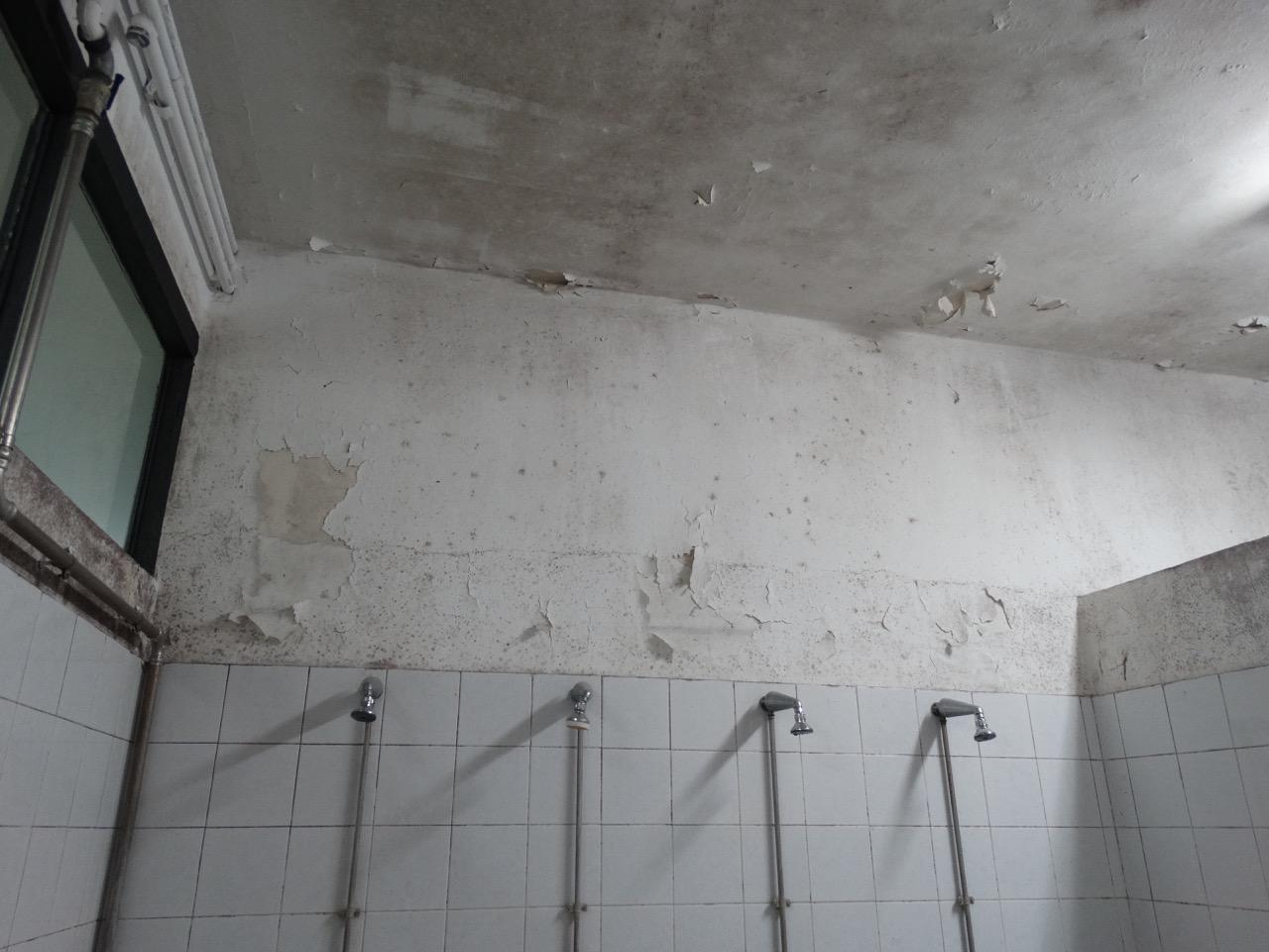 Muffa nello spogliatoio della palestra come si pu fare - Muffa nella doccia ...