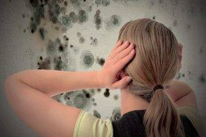 Come eliminare la muffa Definitivamente dai muri, anche se sono anni che PERDI la battaglia in casa tua