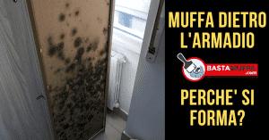 muffa dietro armadio