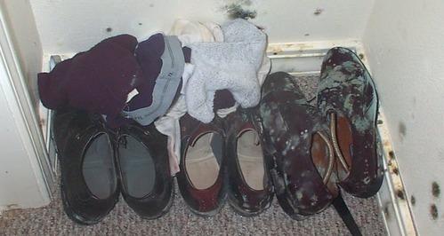 scarpe con muffa