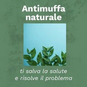 antimuffa naturale