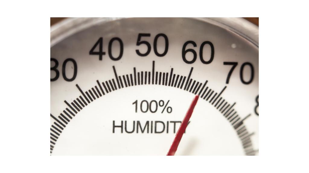problema di muffa e umidità