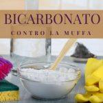 bicarbonato contro la muffa