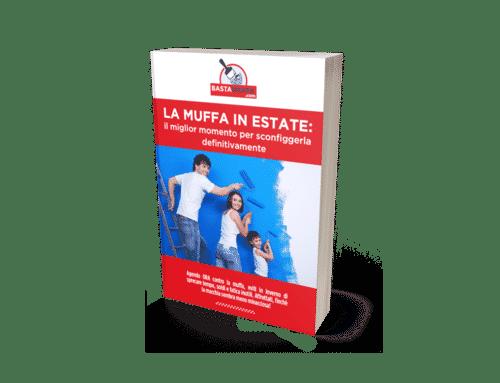 Mockup-Muffa-in-estate.png